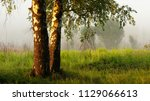 strong beautiful fog and... | Shutterstock . vector #1129066613