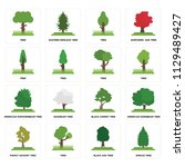 set of 16 icons such as spruce...