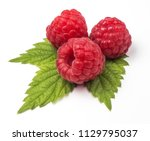 group of fresh red raspberries... | Shutterstock . vector #1129795037
