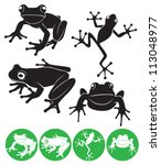 the figure shows a frog | Shutterstock .eps vector #113048977