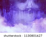 birch trees and ghost reflected ... | Shutterstock . vector #1130801627