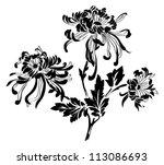 chrysanthemum | Shutterstock .eps vector #113086693
