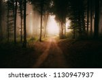 magical forest road in autumn ... | Shutterstock . vector #1130947937