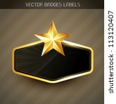 beautiful shiny golden label... | Shutterstock .eps vector #113120407