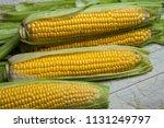 fresh corn on cobs on rustic... | Shutterstock . vector #1131249797