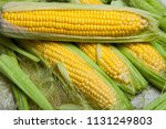 fresh corn on cobs on rustic... | Shutterstock . vector #1131249803
