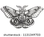 butterfly tattoo art. dotwork... | Shutterstock . vector #1131349703