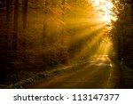 Sunbeams In Colorful Autumn...