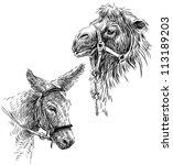pack animals | Shutterstock . vector #113189203