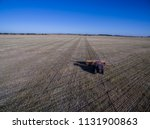 tractor and seeder  direct... | Shutterstock . vector #1131900863