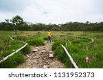 asian woman travel nature.... | Shutterstock . vector #1131952373