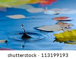 Water Droplet Making Ripples I...