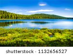 forest lake summer landscape.... | Shutterstock . vector #1132656527