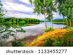 summer forest river shore... | Shutterstock . vector #1133455277