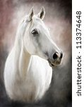 painting portrait of a white horse - stock photo