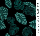 vector tropic seamless pattern. ... | Shutterstock .eps vector #1134021197