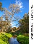 Autumn Wood Bridge Over Creek...