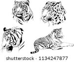 set of vector drawings on the... | Shutterstock .eps vector #1134247877