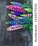 variety of lupin flowers on... | Shutterstock . vector #1134275543
