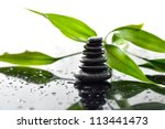 spa still life | Shutterstock . vector #113441473