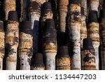 oil drill pipe. rusty drill... | Shutterstock . vector #1134447203