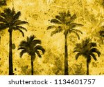 tropical palm grunge background ...   Shutterstock . vector #1134601757