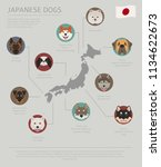 dogs by country of origin.... | Shutterstock .eps vector #1134622673