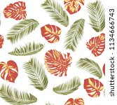 summer exotic floral tropical... | Shutterstock .eps vector #1134666743