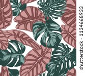 tropical jungle leaves. vector... | Shutterstock .eps vector #1134668933