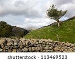 Ancient Stone Farm Dry Stone...