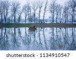 xuanwu lake park nanjing china | Shutterstock . vector #1134910547