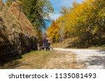 ramet  romania   october 19 ...   Shutterstock . vector #1135081493