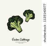 hand drawn vector illustration...   Shutterstock .eps vector #1135140077