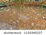 wishing well with cash   Shutterstock . vector #1135340237