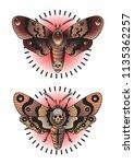 vector night butterfly moth... | Shutterstock .eps vector #1135362257