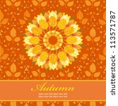 autumn floral background ... | Shutterstock .eps vector #113571787