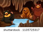 a bear family living in the... | Shutterstock .eps vector #1135725317
