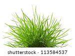 green grass isolated on white... | Shutterstock . vector #113584537