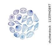hand drawn sea shell round... | Shutterstock .eps vector #1135940897