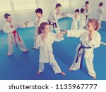 happy kids sparring in pairs to ... | Shutterstock . vector #1135967777