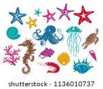 set of vector drawings... | Shutterstock .eps vector #1136010737