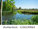 water landscape in  national... | Shutterstock . vector #1136150063