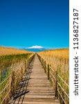wooden bridge walkway path on...   Shutterstock . vector #1136827187