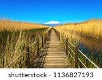 wooden bridge walkway path on...   Shutterstock . vector #1136827193