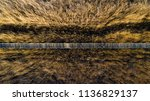 marshes and reeds wetland from...   Shutterstock . vector #1136829137