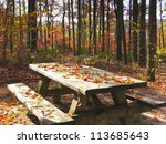 Wooden Picnic Table In Autumn...