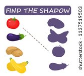 find the right shade of... | Shutterstock .eps vector #1137519503