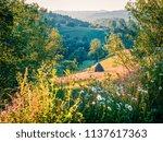 stunning morning scene of...   Shutterstock . vector #1137617363