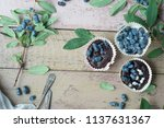 honeysuckle berry and cup cakes ... | Shutterstock . vector #1137631367