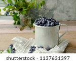 honeysuckle berry in metal cup... | Shutterstock . vector #1137631397
